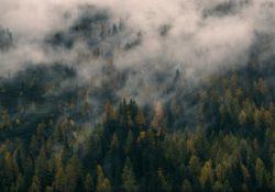diritto-ambientale-normative-innovazioni