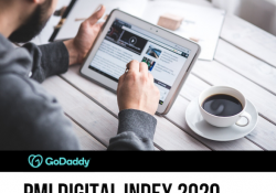 GoDaddy PMI Digital Index 2020